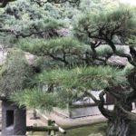 アメリカ在住者が日本旅行で気付いた事まだまだありました(2017年版)